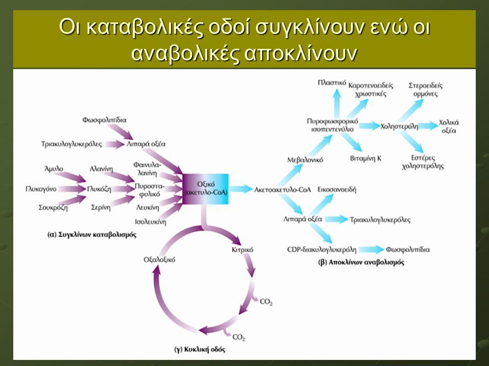 Σημασία των φωσφορυλιωμένων ενδιαμέσων Τα 9 γλυκολυτικά ενδιάμεσα μεταξύ γλυκόζης και πυροσταφυλικού είναι φωσφορυλιωμένα Δεν περνούν την κυτταρική μεμβράνη (οι φωσφορικοί εστέρες  υδρόφιλοι, φορτισμένοι) – διατηρείται η μεταβολική ενέργεια