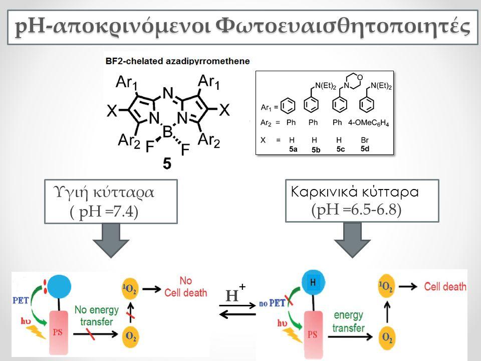 pH-αποκρινόμενοι Φωτοευαισθητοποιητές Καρκινικά κύτταρα (pH =6.5-6.8) Υγιή κύτταρα ( pH =7.4) Η +