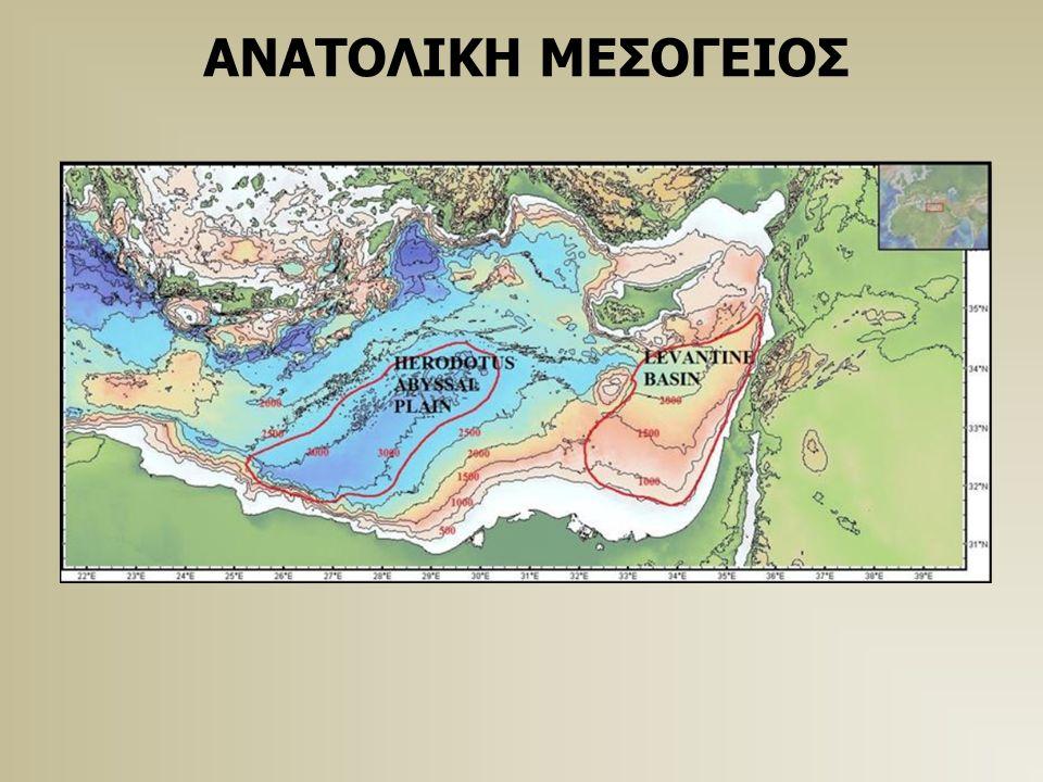 ΑΝΑΤΟΛΙΚΗ ΜΕΣΟΓΕΙΟΣ