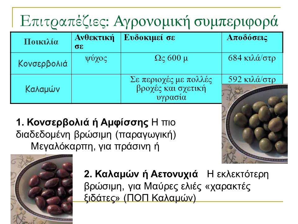 Επιτραπέζιες: Αγρονομική συμπεριφορά Ποικιλία Ανθεκτική σε Ευδοκιμεί σε Αποδόσεις Κονσερβολιά ψύχοςΩς 600 μ684 κιλά/στρ Καλαμών Σε περιοχές με πολλές