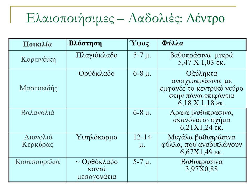 Ελαιοποιήσιμες – Λαδολιές: Δέντρο Ποικιλία ΒλάστησηΎψος Φύλλα Κορωνέικη Πλαγιόκλαδο5-7 μ.βαθυπράσινα μικρά 5,47 Χ 1,03 εκ.