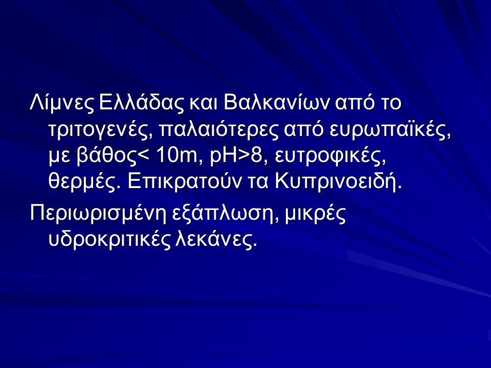 Λίμνες Ελλάδας και Βαλκανίων από το τριτογενές, παλαιότερες από ευρωπαϊκές, με βάθος 8, ευτροφικές, θερμές.