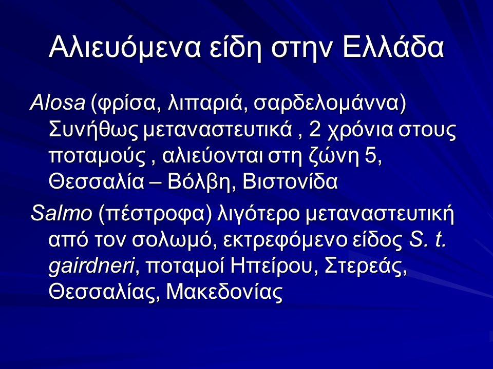Αλιευόμενα είδη στην Ελλάδα Alosa (φρίσα, λιπαριά, σαρδελομάννα) Συνήθως μεταναστευτικά, 2 χρόνια στους ποταμούς, αλιεύονται στη ζώνη 5, Θεσσαλία – Βόλβη, Βιστονίδα Salmo (πέστροφα) λιγότερο μεταναστευτική από τον σολωμό, εκτρεφόμενο είδος S.