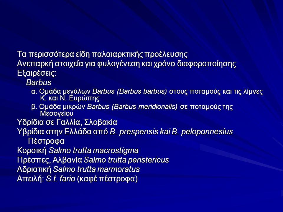 Τα περισσότερα είδη παλαιαρκτικής προέλευσης Ανεπαρκή στοιχεία για φυλογένεση και χρόνο διαφοροποίησης Εξαιρέσεις: Barbus Barbus α.