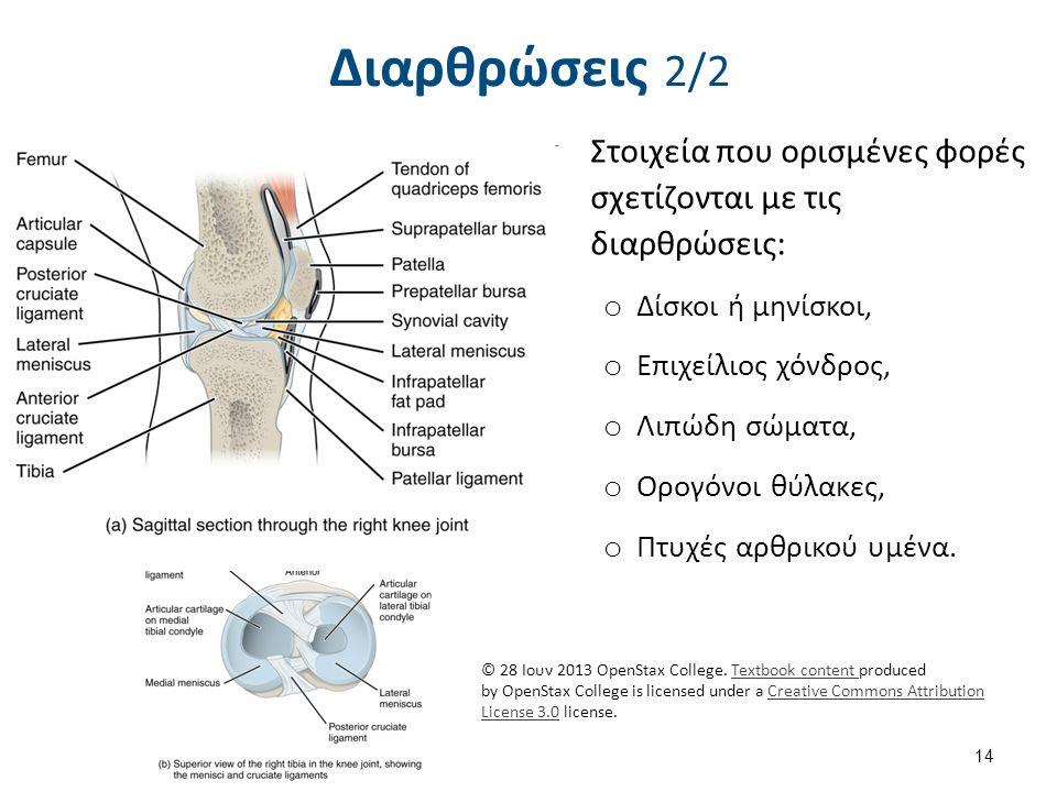 Διαρθρώσεις 2/2 14 Στοιχεία που ορισμένες φορές σχετίζονται με τις διαρθρώσεις: o Δίσκοι ή μηνίσκοι, o Επιχείλιος χόνδρος, o Λιπώδη σώματα, o Ορογόνοι