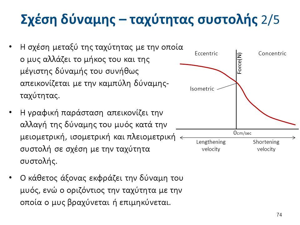 Σχέση δύναμης – ταχύτητας συστολής 2/5 Η σχέση μεταξύ της ταχύτητας με την οποία ο μυς αλλάζει το μήκος του και της μέγιστης δύναμής του συνήθως απεικ