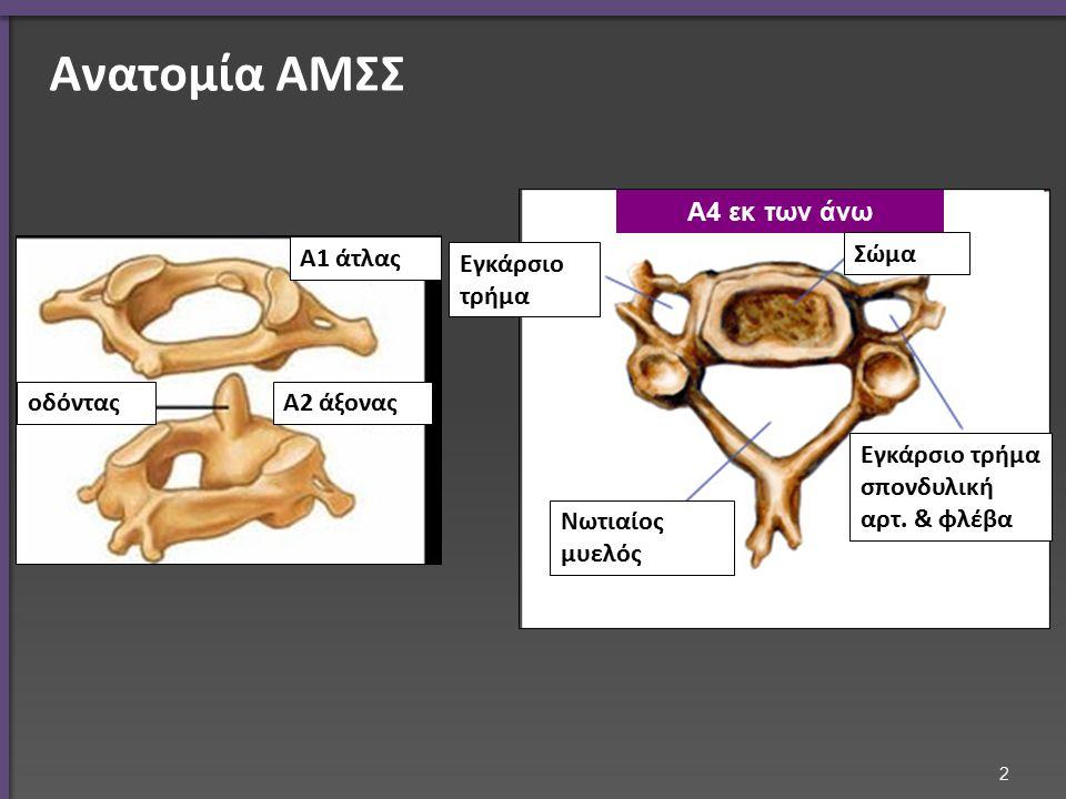 Ανατομία ΑΜΣΣ Α1 άτλας Α2 άξοναςοδόντας Α4 εκ των άνω Σώμα Εγκάρσιο τρήμα σπονδυλική αρτ. & φλέβα Νωτιαίος μυελός Εγκάρσιο τρήμα 2