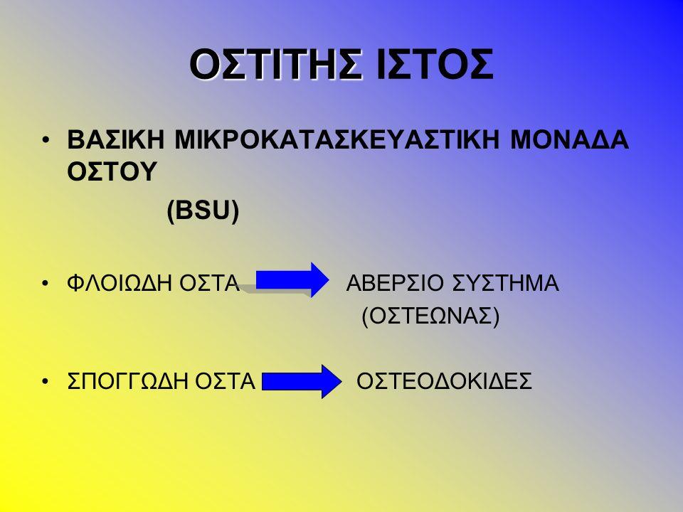 ΟΣΤΙΚΗ ΑΝΑΚΑΤΑΣΚΕΥΗ