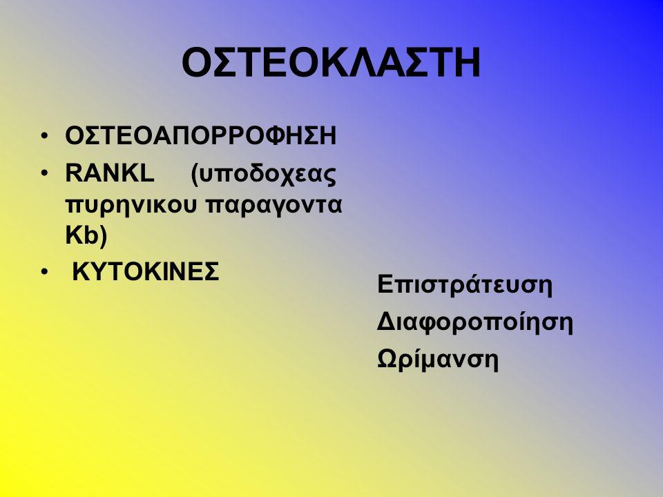 Ακτινολογική εικόνα Καθυστέρηση της εμφάνισης των πυρήνων οστέωσης Οστεοπενία πιο έντονη στην περιοχή της μετάφυσης Λέπτυνση του φλοιού των οστών Διεύρυνση των συζευκτικών χόνδρων Διεύρυνση των μεταφύσεων που παίρνουν τη μορφή κυπελλίου Παραμόρφωση των διαφύσεων σε ραιβότητα (προχωρημένες καταστάσεις)