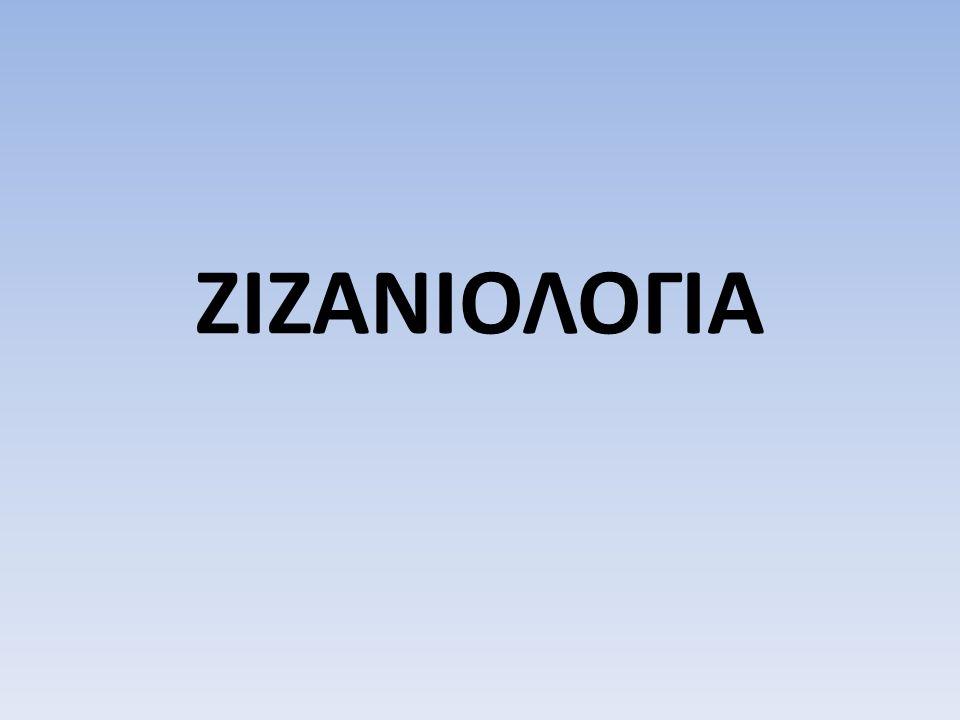 ΖΙΖΑΝΙΟΛΟΓΙΑ