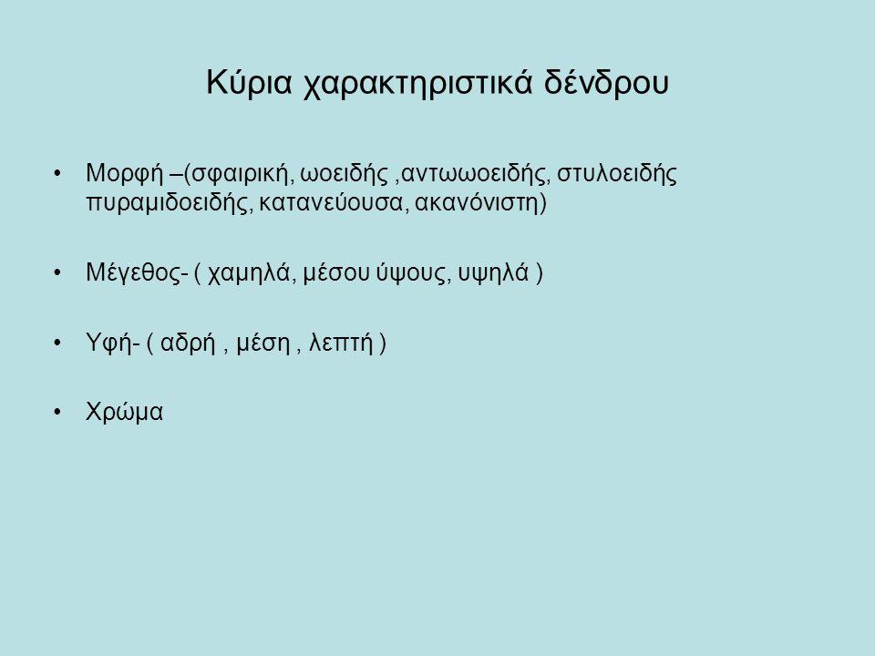 Κύρια χαρακτηριστικά δένδρου Μορφή –(σφαιρική, ωοειδής,αντωωοειδής, στυλοειδής πυραμιδοειδής, κατανεύουσα, ακανόνιστη) Μέγεθος- ( χαμηλά, μέσου ύψους, υψηλά ) Υφή- ( αδρή, μέση, λεπτή ) Χρώμα