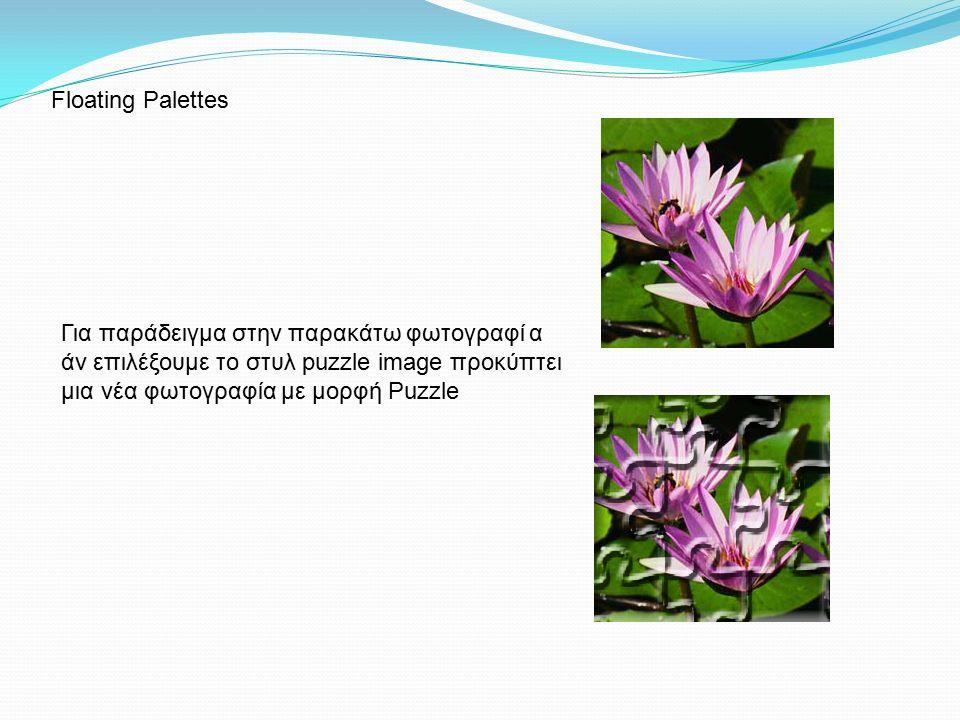 Για παράδειγμα στην παρακάτω φωτογραφί α άν επιλέξουμε το στυλ puzzle image προκύπτει μια νέα φωτογραφία με μορφή Puzzle Floating Palettes