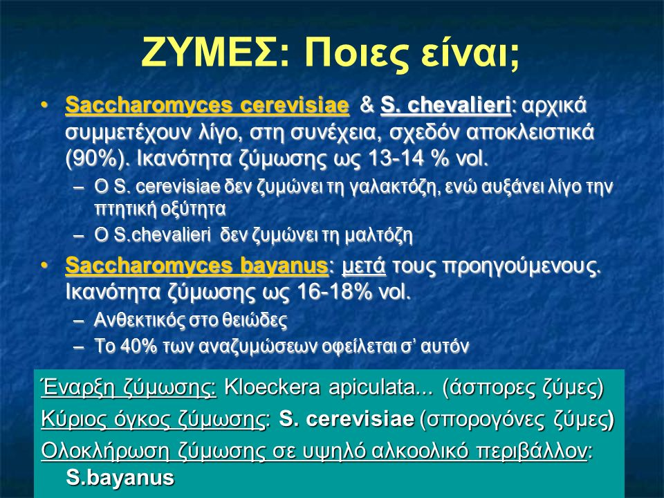 ΖΥΜΕΣ: Ποιες είναι; Saccharomyces cerevisiae & S. chevalieri: αρχικά συμμετέχουν λίγο, στη συνέχεια, σχεδόν αποκλειστικά (90%). Ικανότητα ζύμωσης ως 1