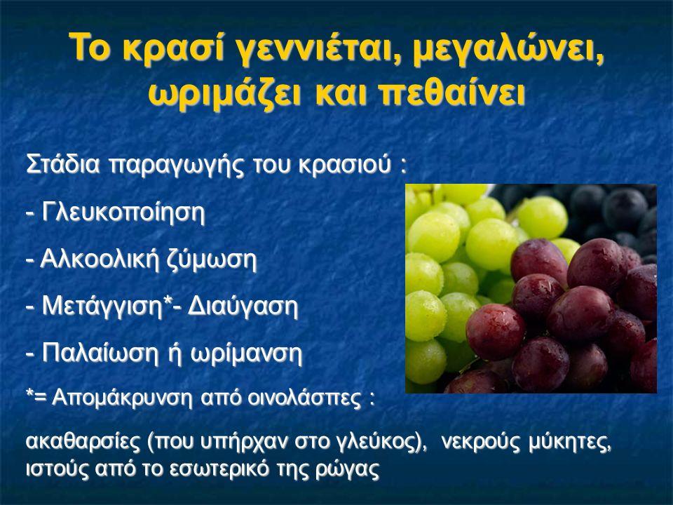 Το κρασί γεννιέται, μεγαλώνει, ωριμάζει και πεθαίνει Στάδια παραγωγής του κρασιού : - Γλευκοποίηση - Αλκοολική ζύμωση - Μετάγγιση*- Διαύγαση - Παλαίωσ