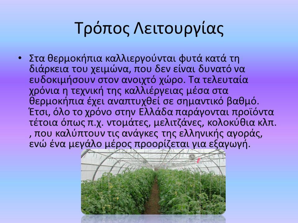Τρόπος Λειτουργίας Στα θερμοκήπια καλλιεργούνται φυτά κατά τη διάρκεια του χειμώνα, που δεν είναι δυνατό να ευδοκιμήσουν στον ανοιχτό χώρο. Τα τελευτα