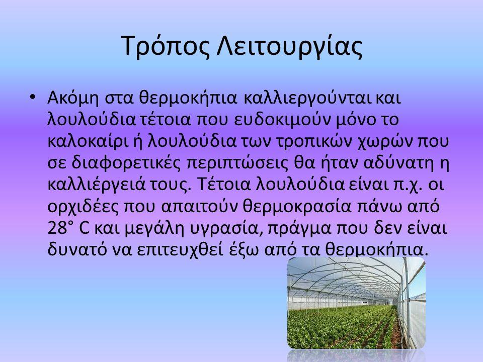 Τρόπος Λειτουργίας Ακόμη στα θερμοκήπια καλλιεργούνται και λουλούδια τέτοια που ευδοκιμούν μόνο το καλοκαίρι ή λουλούδια των τροπικών χωρών που σε διαφορετικές περιπτώσεις θα ήταν αδύνατη η καλλιέργειά τους.