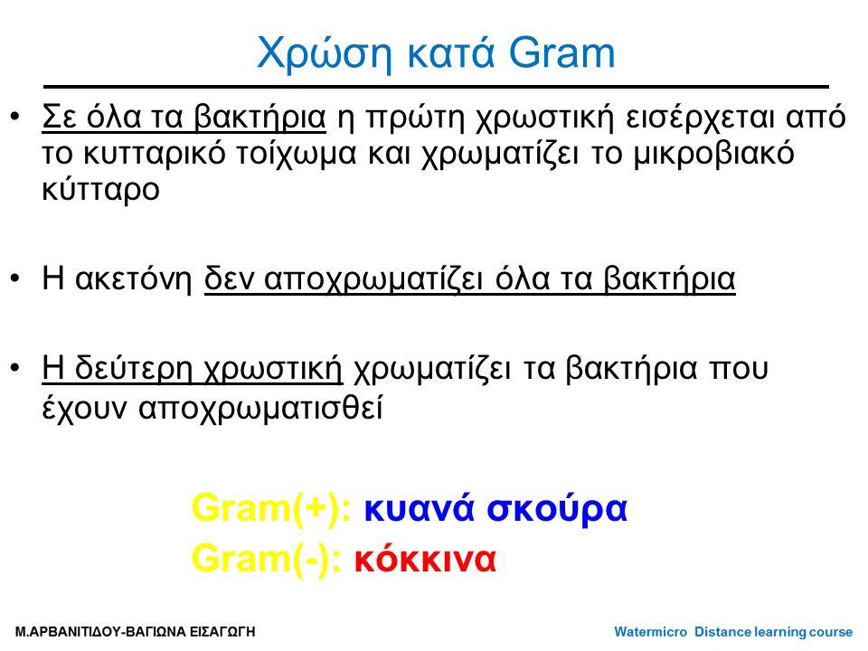 Χρώση κατά Gram Σε όλα τα βακτήρια η πρώτη χρωστική εισέρχεται από το κυτταρικό τοίχωμα και χρωματίζει το μικροβιακό κύτταρο Η ακετόνη δεν αποχρωματίζει όλα τα βακτήρια Η δεύτερη χρωστική χρωματίζει τα βακτήρια που έχουν αποχρωματισθεί Gram(+): κυανά σκούρα Gram(-): κόκκινα