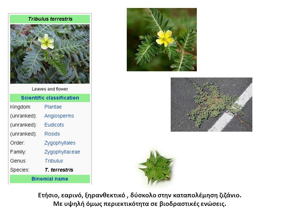 Η τσουκνίδα (ή τσουκνίθα) ανήκει στο γένος των αγγειόσπερμων φυτών Κνίδη και στην οικογένεια των Κνιδοειδών.