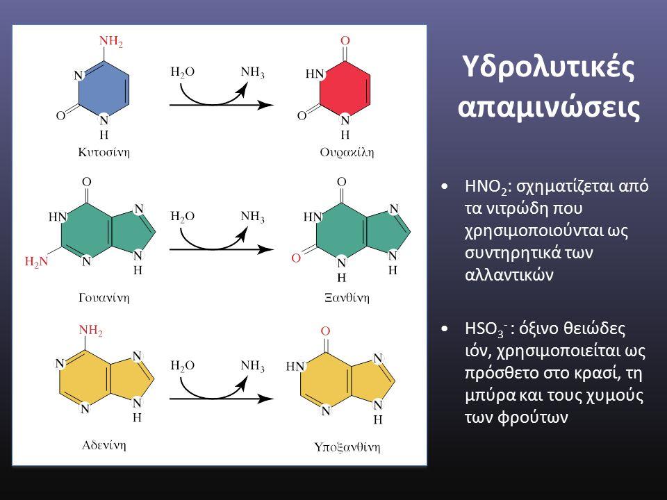 Υδρολυτικές απαμινώσεις ΗΝΟ 2 : σχηματίζεται από τα νιτρώδη που χρησιμοποιούνται ως συντηρητικά των αλλαντικών HSO 3 - : όξινο θειώδες ιόν, χρησιμοποιείται ως πρόσθετο στο κρασί, τη μπύρα και τους χυμούς των φρούτων