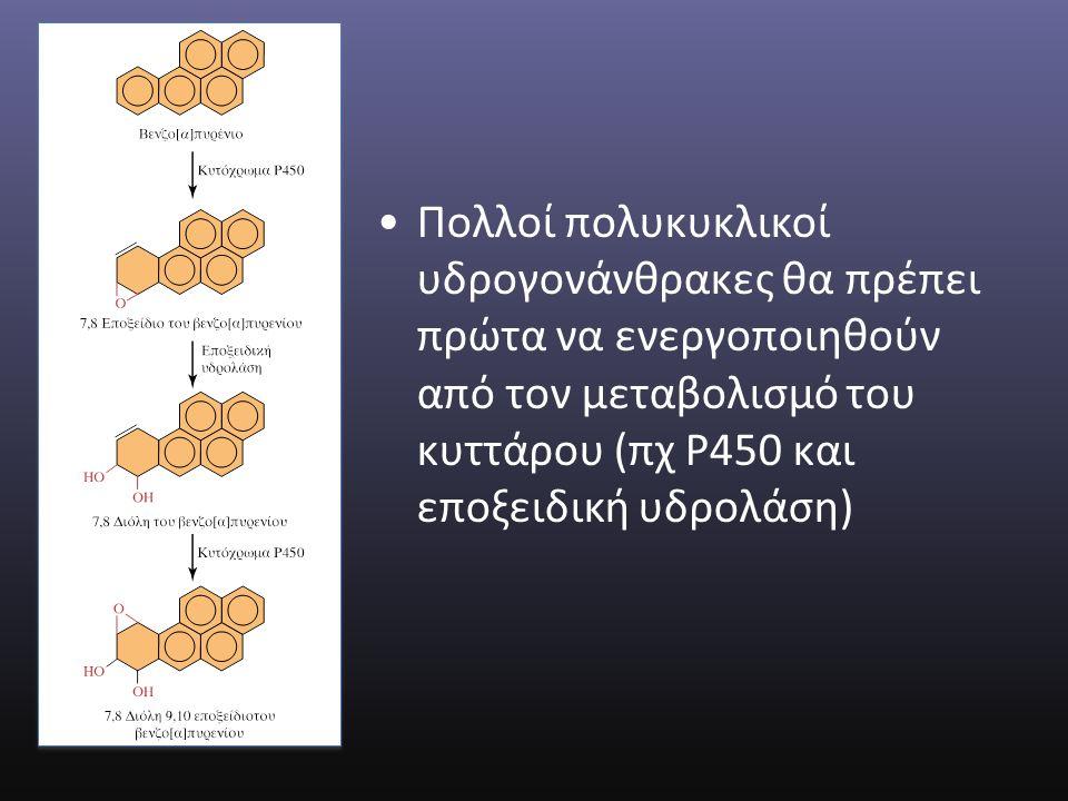 Πολλοί πολυκυκλικοί υδρογονάνθρακες θα πρέπει πρώτα να ενεργοποιηθούν από τον μεταβολισμό του κυττάρου (πχ Ρ450 και εποξειδική υδρολάση)