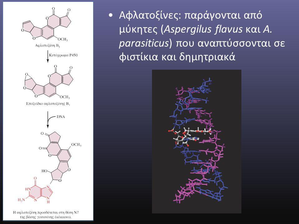 Αφλατοξίνες: παράγονται από μύκητες (Aspergilus flavus και A.