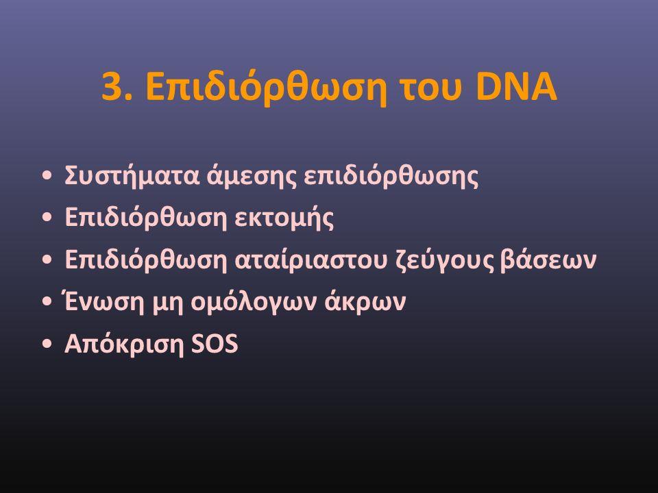 3. Επιδιόρθωση του DNA Συστήματα άμεσης επιδιόρθωσης Επιδιόρθωση εκτομής Επιδιόρθωση αταίριαστου ζεύγους βάσεων Ένωση μη ομόλογων άκρων Απόκριση SOS
