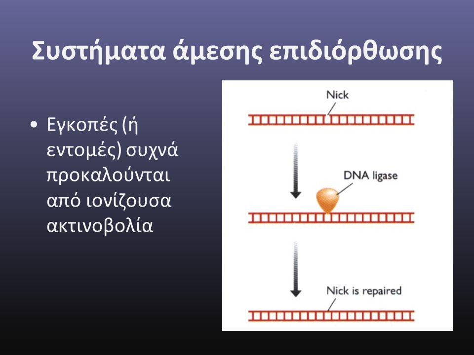 Συστήματα άμεσης επιδιόρθωσης Εγκοπές (ή εντομές) συχνά προκαλούνται από ιονίζουσα ακτινοβολία