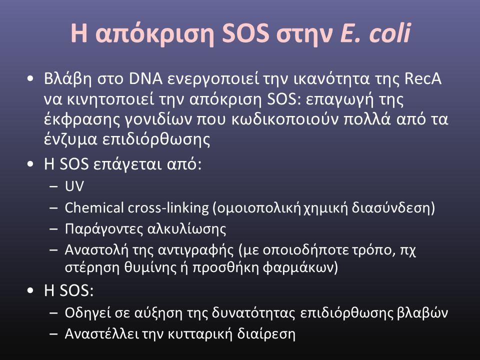 Η απόκριση SOS στην E.