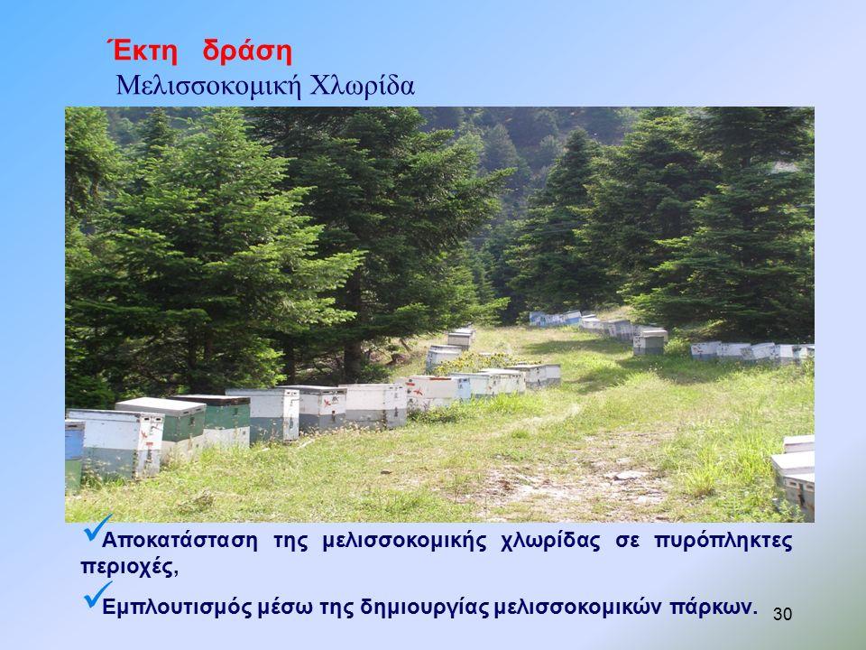 Έκτη δράση Μελισσοκομική Χλωρίδα Αποκατάσταση της μελισσοκομικής χλωρίδας σε πυρόπληκτες περιοχές, Εμπλουτισμός μέσω της δημιουργίας μελισσοκομικών πάρκων.