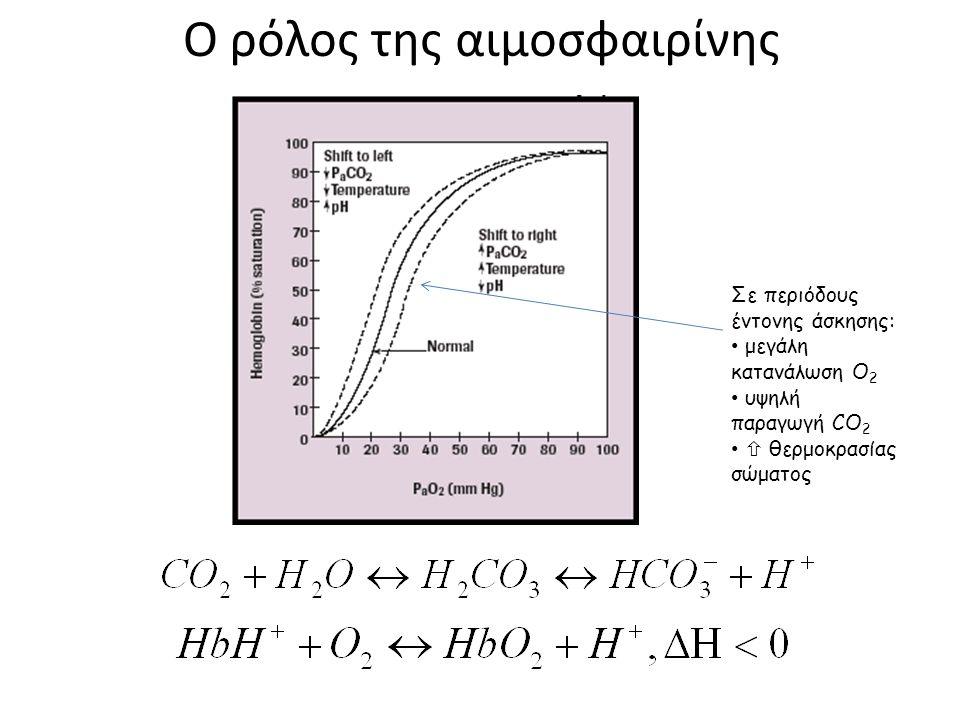 Σε περιόδους έντονης άσκησης: μεγάλη κατανάλωση Ο 2 υψηλή παραγωγή CO 2  θερμοκρασίας σώματος