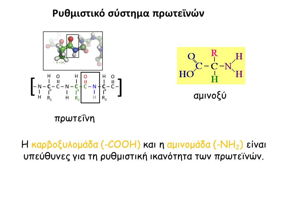 Ρυθμιστικό σύστημα πρωτεϊνών Η καρβοξυλομάδα (-COOH) και η αμινομάδα (-NH 2 ) είναι υπεύθυνες για τη ρυθμιστική ικανότητα των πρωτεϊνών.
