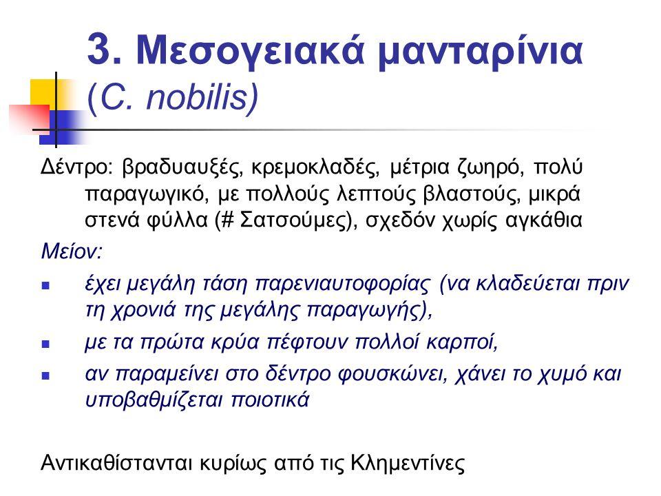 3. Μεσογειακά μανταρίνια (C. nobilis) Δέντρο: βραδυαυξές, κρεμοκλαδές, μέτρια ζωηρό, πολύ παραγωγικό, με πολλούς λεπτούς βλαστούς, μικρά στενά φύλλα (