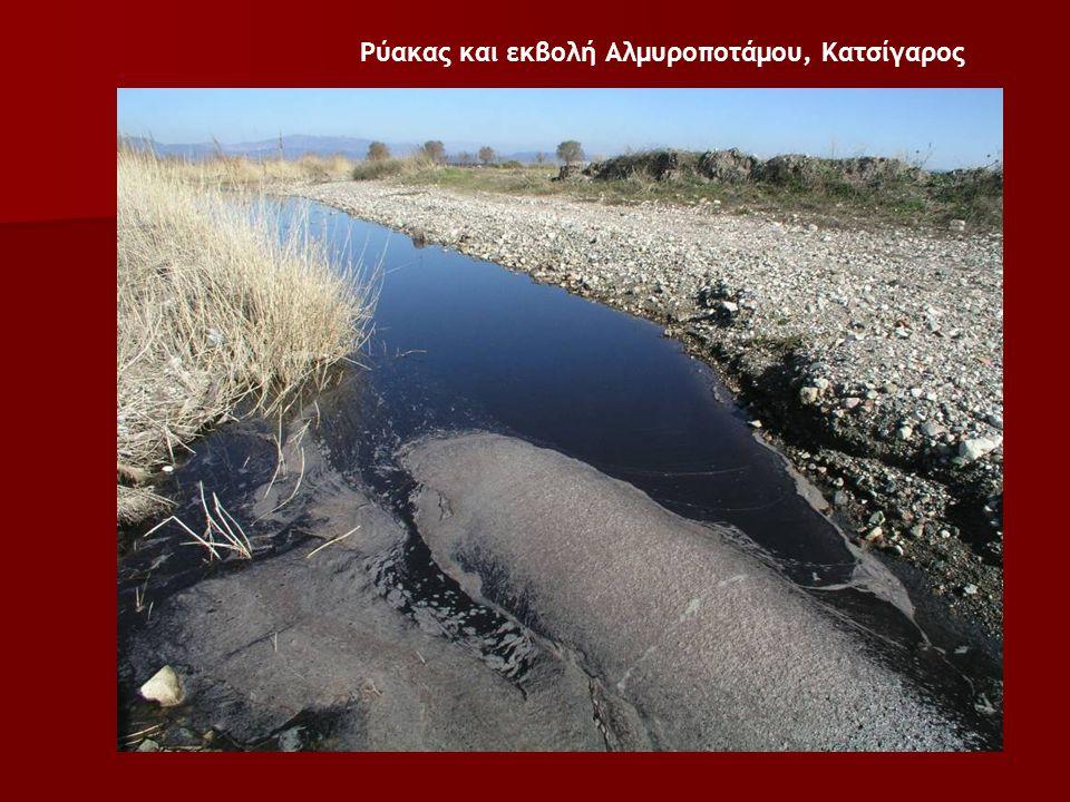 Ρύακας και εκβολή Αλμυροποτάμου, Κατσίγαρος