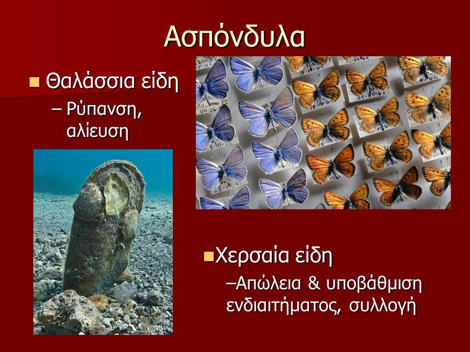 Ασπόνδυλα Θαλάσσια είδη Θαλάσσια είδη –Ρύπανση, αλίευση Χερσαία είδη Χερσαία είδη –Απώλεια & υποβάθμιση ενδιαιτήματος, συλλογή