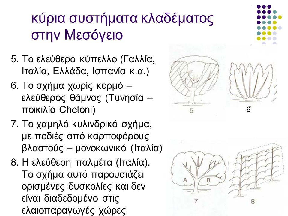 κύρια συστήματα κλαδέματος στην Μεσόγειο 5.