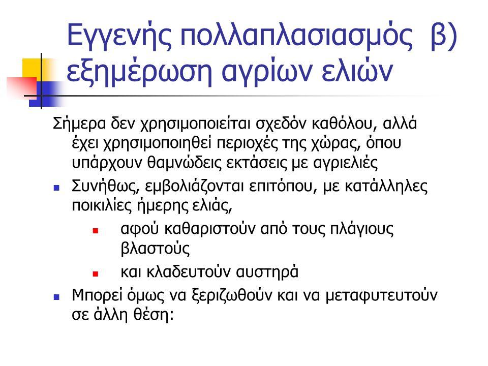 Εγγενής πολλαπλασιασμός β) εξημέρωση αγρίων ελιών Σήμερα δεν χρησιμοποιείται σχεδόν καθόλου, αλλά έχει χρησιμοποιηθεί περιοχές της χώρας, όπου υπάρχου