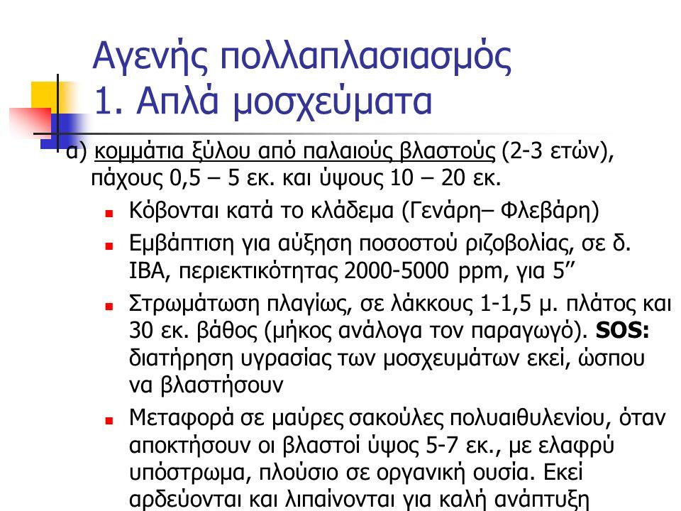 α) κομμάτια ξύλου από παλαιούς βλαστούς (2-3 ετών), πάχους 0,5 – 5 εκ. και ύψους 10 – 20 εκ. Κόβονται κατά το κλάδεμα (Γενάρη– Φλεβάρη) Εμβάπτιση για
