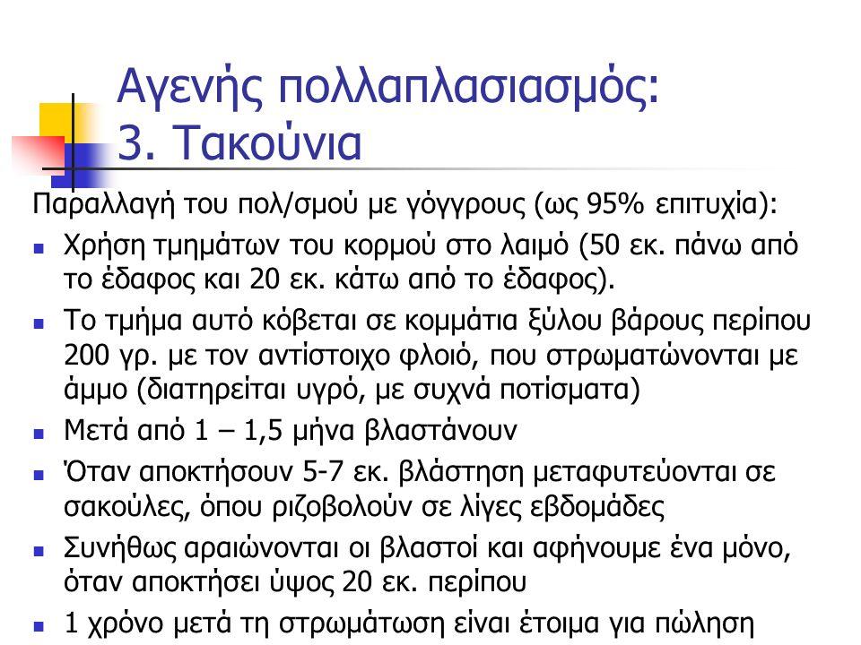 Παραλλαγή του πολ/σμού με γόγγρους (ως 95% επιτυχία): Χρήση τμημάτων του κορμού στο λαιμό (50 εκ. πάνω από το έδαφος και 20 εκ. κάτω από το έδαφος). Τ