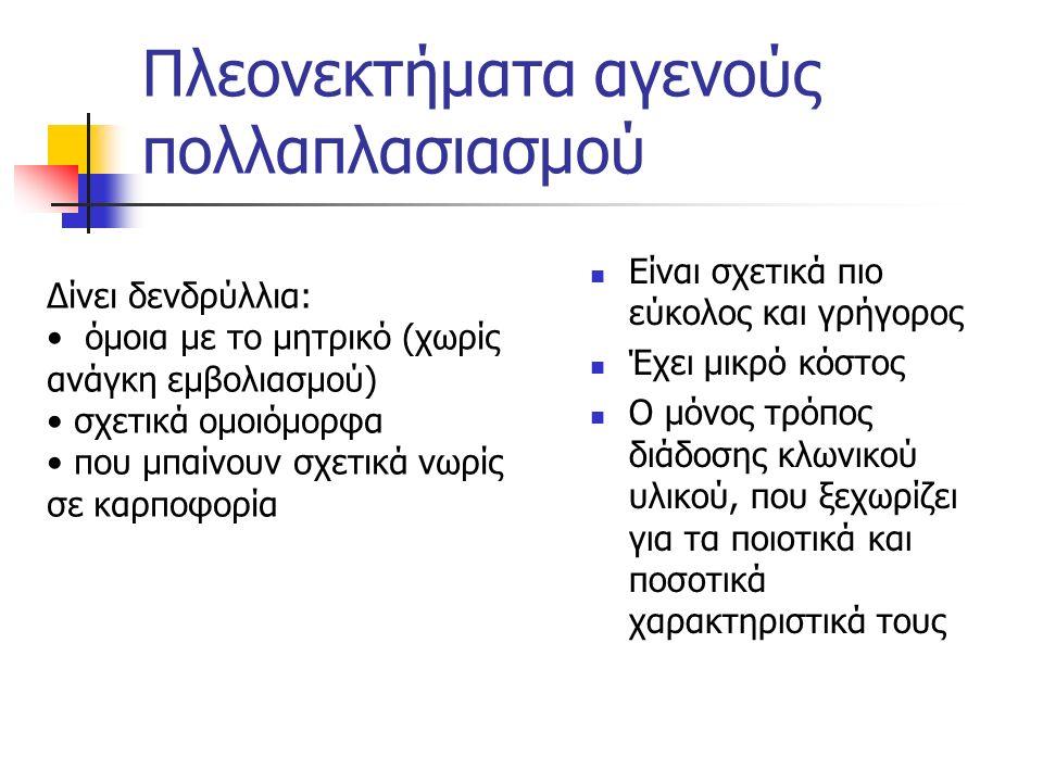 Εγγενής πολλαπλασιασμός α) σπορόφυτα υποκείμενα Α) με σπόρο (υποκείμενα + μετά εμβολιασμός πάντα) Μειονεκτήματα: Βραδύς (τα δενδρύλια μένουν πολύ στα φυτώρια) Ανομοιόμορφα δενδρύλια Μεγάλο κόστος Σε δύο στάδια: α) δημιουργία σποροφύτων - υποκειμένων, από επιλεγμένους πυρήνες (σπόρους) β) εμβολιασμός των υποκειμένων με τις επιλεγμένες ποικιλίες