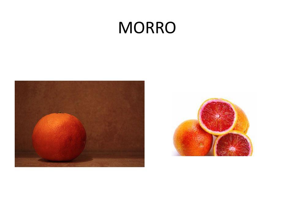MORRO