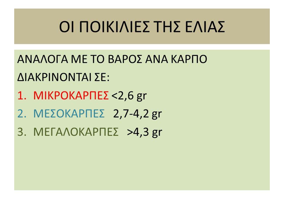 ΟΙ ΠΟΙΚΙΛΙΕΣ ΤΗΣ ΕΛΙΑΣ ΑΝΑΛΟΓΑ ΜΕ ΤΟ ΒΑΡΟΣ ΑΝΑ ΚΑΡΠΟ ΔΙΑΚΡΙΝΟΝΤΑΙ ΣΕ: 1.ΜΙΚΡΟΚΑΡΠΕΣ <2,6 gr 2.ΜΕΣΟΚΑΡΠΕΣ 2,7-4,2 gr 3.ΜΕΓΑΛΟΚΑΡΠΕΣ >4,3 gr