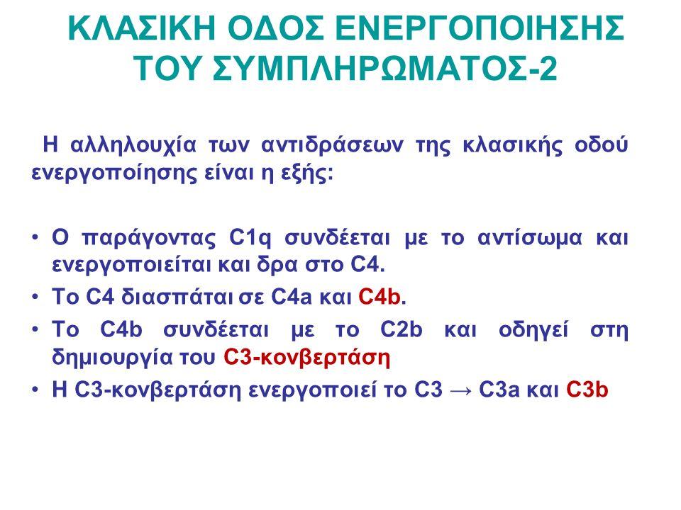 ΚΛΑΣΙΚΗ ΟΔΟΣ ΕΝΕΡΓΟΠΟΙΗΣΗΣ ΤΟΥ ΣΥΜΠΛΗΡΩΜΑΤΟΣ-2 Η αλληλουχία των αντιδράσεων της κλασικής οδού ενεργοποίησης είναι η εξής: Ο παράγοντας C1q συνδέεται με το αντίσωμα και ενεργοποιείται και δρα στο C4.