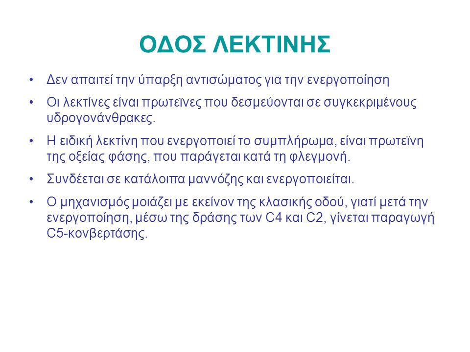 ΟΔΟΣ ΛΕΚΤΙΝΗΣ Δεν απαιτεί την ύπαρξη αντισώματος για την ενεργοποίηση Οι λεκτίνες είναι πρωτεϊνες που δεσμεύονται σε συγκεκριμένους υδρογονάνθρακες.