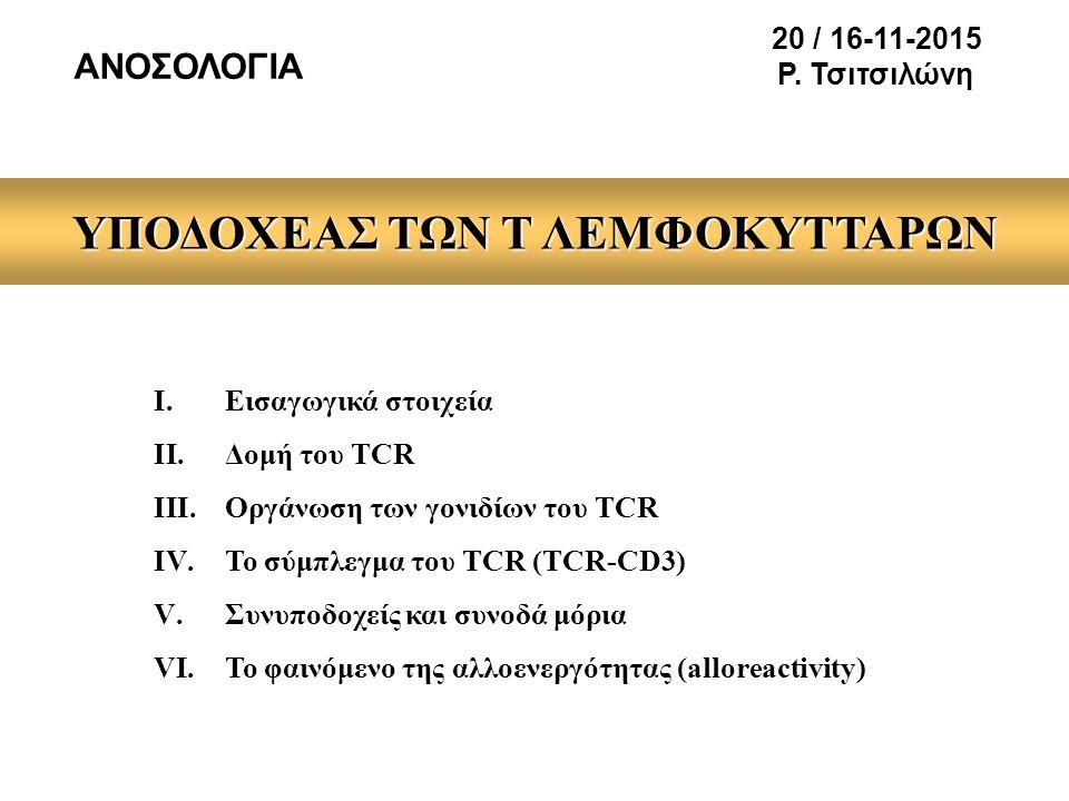 ΥΠΟΔΟΧΕΑΣ ΤΩΝ Τ ΛΕΜΦΟΚΥΤΤΑΡΩΝ I.Εισαγωγικά στοιχεία II.Δομή του TCR III.Οργάνωση των γονιδίων του TCR IV.Το σύμπλεγμα του TCR (TCR-CD3) V.Συνυποδοχείς και συνοδά μόρια VI.Το φαινόμενο της αλλοενεργότητας (alloreactivity) ΑΝΟΣΟΛΟΓΙΑ 20 / 16-11-2015 Ρ.