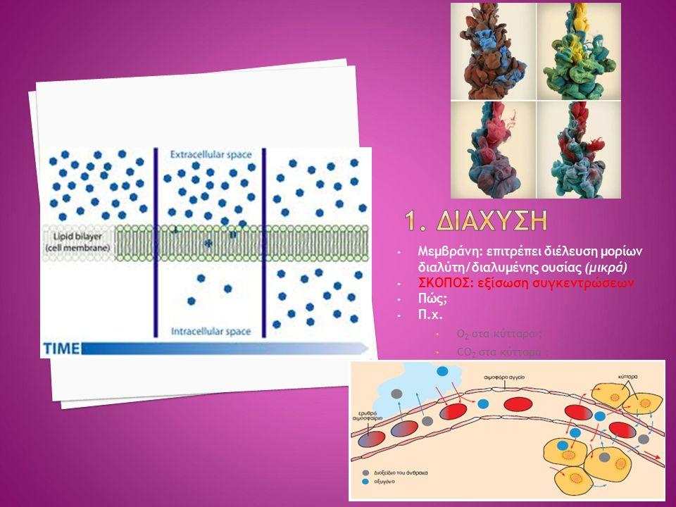 Μεμβράνη: επιτρέπει διέλευση μορίων διαλύτη/διαλυμένης ουσίας (μικρά) ΣΚΟΠΟΣ: εξίσωση συγκεντρώσεων Πώς; Π.χ.