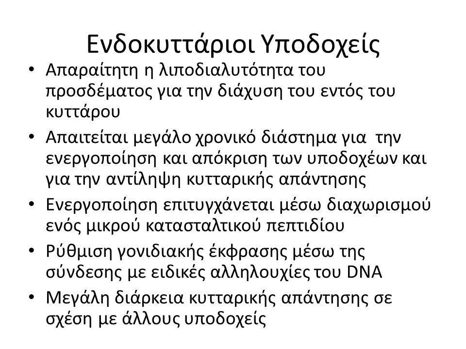 Ενδοκυττάριοι Υποδοχείς