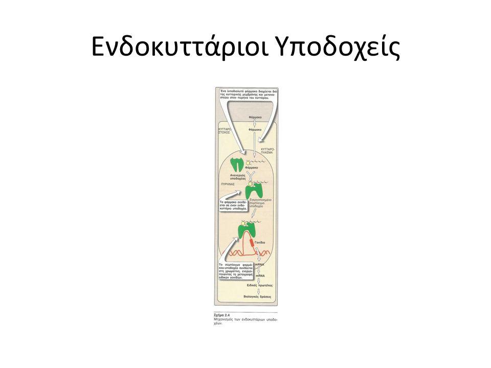 Θεραπευτικός δείκτης = Τοξική δόση/αποτελεσματική δόση αποτελεί μέτρο της ασφάλειας ενός φαρμάκου