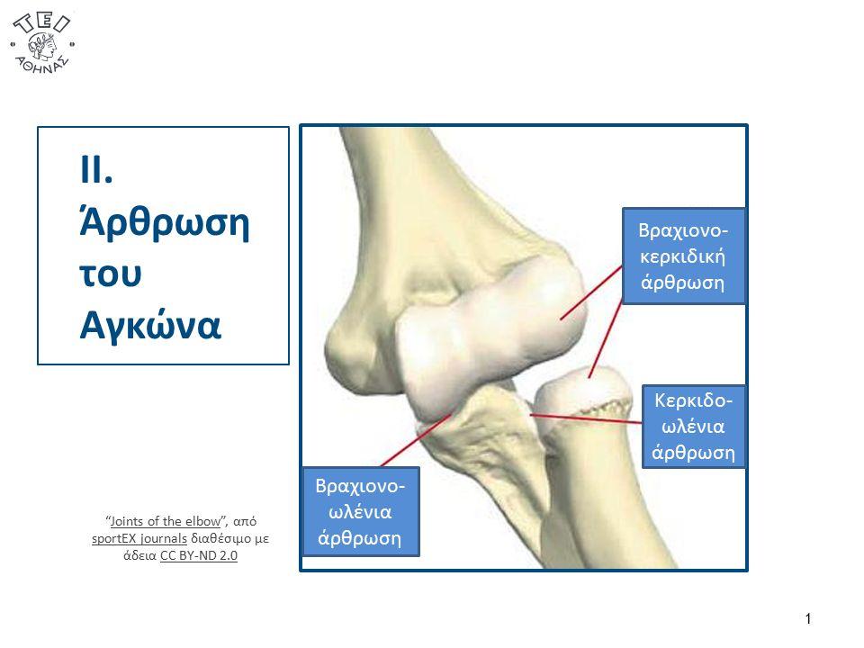 Κινήσεις/Σταθερότητα  Η άρθρωση του αγκώνα είναι σύμπλεγμα τριών ανεξάρτητων διαρθρώσεων: της βραχιονοκερκιδικής, της βραχιονωλενικής και της κερκιδωλενικής.