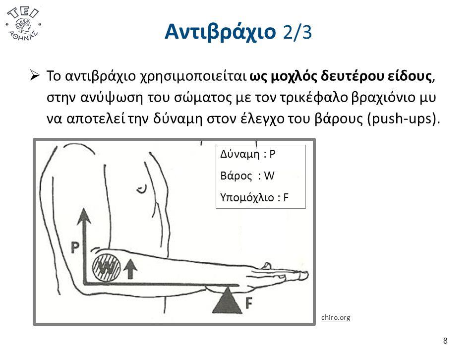 Αντιβράχιο 3/3 9 Δύναμη : P Βάρος : W Υπομόχλιο : F  Το αντιβράχιο χρησιμοποιείται ως μοχλός τρίτου είδους, στην ανύψωση ενός βάρους κατακόρυφα με τον δικέφαλο βραχιόνιο μυ να αποτελεί την δύναμη.