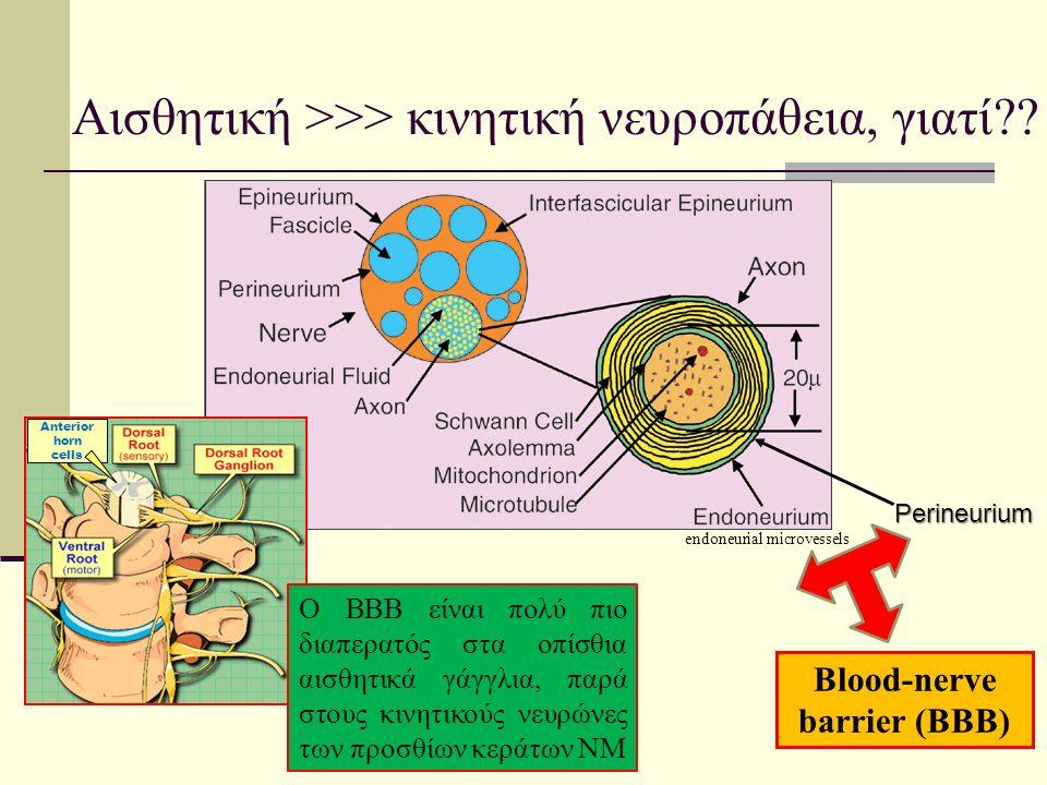 Αισθητική >>> κινητική νευροπάθεια, γιατί .